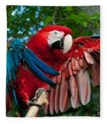 Red Macaw Fleece Blanket