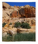 Red Rock Canyon The Tank Fleece Blanket