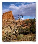 Red Rock Castle Fleece Blanket