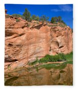 Red Rock Formation In The Kaibab Plateau In Grand Canyon National Park Fleece Blanket
