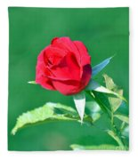 Red Rose With Star-shaped Collar Fleece Blanket