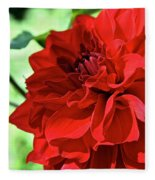 Red Ruby Dahlia Fleece Blanket
