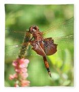 Red Saddlebag Dragonfly In The Marsh Fleece Blanket