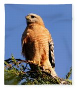 Pismo Beach Red Shoulder Hawk Fleece Blanket