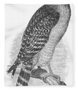 Red-shouldered Hawk, 1890 Fleece Blanket