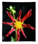Red Star Dahlia Fleece Blanket