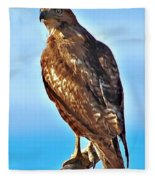 Red Tail Hawk Fleece Blanket