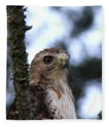 Red-tailed Hawk - Hawkeye Fleece Blanket
