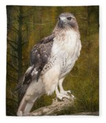 Red Tailed Hawk Perched On A Branch In The Woodlands Fleece Blanket