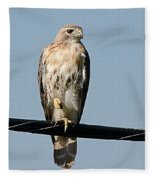 Red-tailed Hawk Fleece Blanket