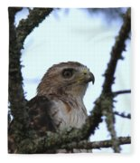 Red-tailed Hawk - Young And The Old Fleece Blanket