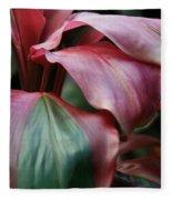 Red Ti - Cordyline Terminalis Fleece Blanket