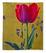 Red Tulip With Yellow Wall Fleece Blanket