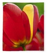 Red Tulips 1 Fleece Blanket