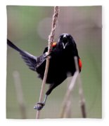 Red-winged Blackbird - Can You Hear Me Now Fleece Blanket