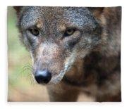 Red Wolf Closeup Fleece Blanket