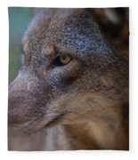 Red Wolf Stare Fleece Blanket