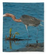 Reddish Egret Hunting Fleece Blanket