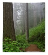Redwood Path Fleece Blanket