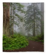 Redwoods Rising In Fog Fleece Blanket