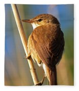 Reed Warbler Fleece Blanket