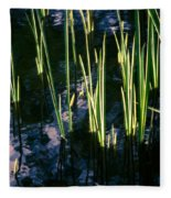 Reeds At Sunset Fleece Blanket