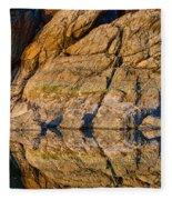 Reflecting Last Rays Of Setting Sun Fleece Blanket