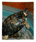 Reflecting Turtle Fleece Blanket