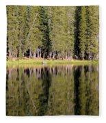 Reflections Along Summit Lake Fleece Blanket