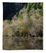 Reflections On Marshall Pond Fleece Blanket