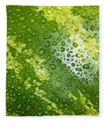 Refreshing Watermelon Fleece Blanket