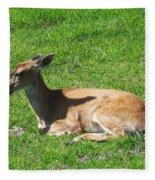 Relaxin Fleece Blanket