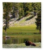 Resting Buffalo By Pond Fleece Blanket
