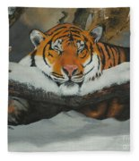 Resting Tiger Fleece Blanket