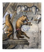 Reynard The Fox, 1846 Fleece Blanket