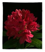 Rhododendron At Sunset 2 Fleece Blanket