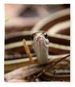 Ribbon Snake Fleece Blanket