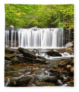 Ricketts Glen Waterfall Oneida Fleece Blanket