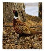 Ring-necked Pheasant Fleece Blanket