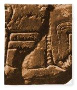 Riverboat On Ancient Seal Fleece Blanket