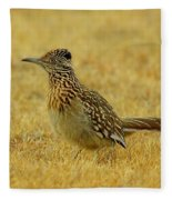 Roadrunner Hen Fleece Blanket