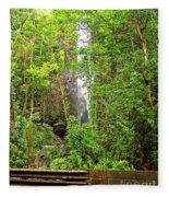 Roadside Waterfall Fleece Blanket