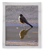 Robin Reflection Fleece Blanket