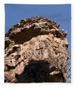 Rock Formations Bhimbhetka Fleece Blanket