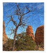 Rock Garden Skeleton Arches National Park Fleece Blanket