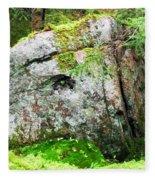 Rock Spirits Keeping Secrets Fleece Blanket
