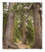 Rocky Mountain Forest Walk Fleece Blanket