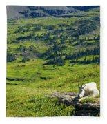 Rocky Mountain Goat Glacier National Park Fleece Blanket