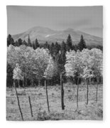 Rocky Mountain High Country Autumn Fall Foliage Scenic View Bw Fleece Blanket
