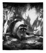 Rocky Raccoon Fleece Blanket